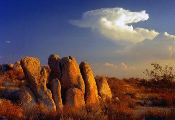 Wo ist die Mojave-Wüste? Beschreibung