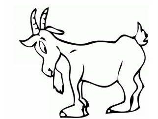 1991, année de l'animal dans le calendrier de l'Est? Caractéristiques et compatibilité de la marque