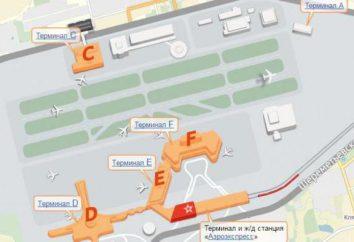 Les terminaux et Sheremetyevo de circuit