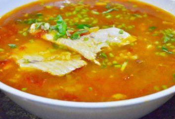 Pomidorowa zupa rybna: metody gotowania i opis receptur