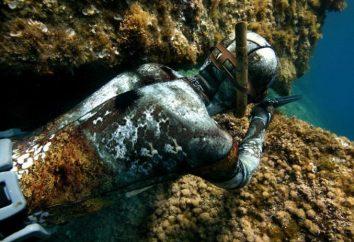 Kombinezon do łowiectwa podwodnego, jak wybrać odpowiedni?