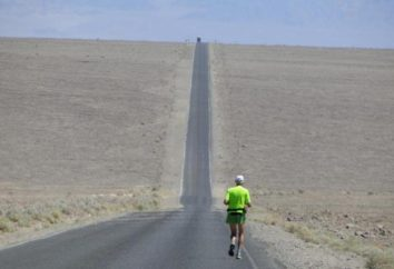 Stayer – un corredor de larga distancia