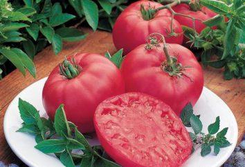 """Tomate """"Pink spam"""": características de la variedad, foto, opiniones"""