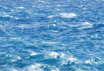 Do Atlântico Norte atual: suas características e influência sobre o clima