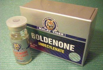 Réception « boldenone »: avis, bien sûr sur le poids, les effets secondaires