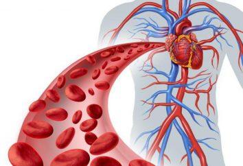 La violation de la circulation sanguine périphérique: la thrombose et une embolie