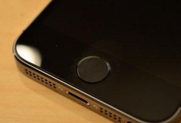 Quando c'era un nuovo iPhone? La questione principale dello scorso anno nel mondo della tecnologia