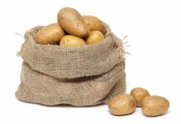 Come piantare le patate, tutti dovrebbero sapere contadino!