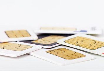 Porady i wskazówki: jak aktywować kartę SIM Beeline