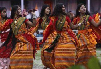 Tribo, nacionalidade, nação – o que é isso? O conteúdo dos conceitos