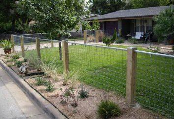 Ogrodzenia wykonane z siatek zgrzewanych ocynkowanych: instalacja, wady i zalety