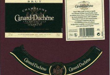 Kształt, liczba, wielkość etykiety na szampana