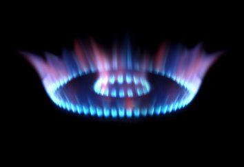 Der Ursprung des Erdgases, seiner Reserven und der Produktion. Die Ablagerungen von Erdgas in Russland und der Welt