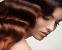 Żelatyna włosów: Liczba trichologists. Żelatyny skuteczne przywrócenie włosów (recepty)