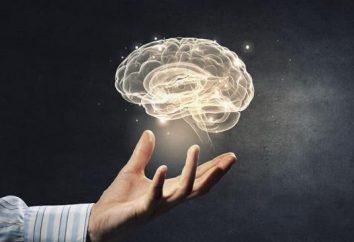 7 sesje, które uczynią pracę mózgu szybciej