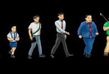 La edad biológica y la cronológica – la diferencia de edad … es la edad cronológica de la psicológica