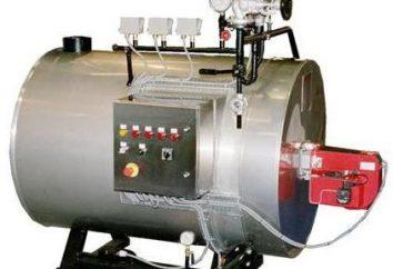 Generator pary własnymi rękami. Jak zrobić generator pary na drewnie z rękami