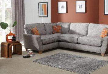 Czyszczenie sofa w domu: jak