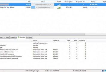 Wie Spiele von Torrents zum Download: Unterricht