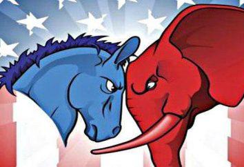 Jak wybrać Prezydent Stanów Zjednoczonych? Jak działa system wyborczy? Wybory prezydenckie w USA