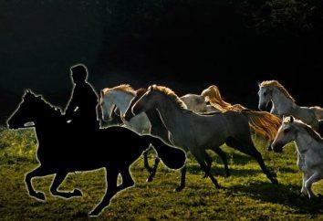 """Zusammenfassung: """"Bezhin Meadow"""" von Turgenev"""