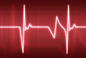 La formazione del cuore e dei vasi sanguigni. Una serie di esercizi e la consulenza di professionisti