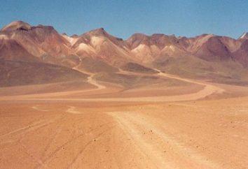 Was ist die größte Wüste in Südamerika? Einer der größten Wüsten der Welt in Südamerika