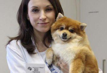 """Clínicas veterinarias """"encanto"""" en Golyanovo: fotos, dirección, opiniones"""