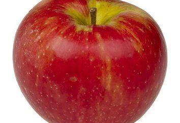 Devinettes sur les fruits et non seulement