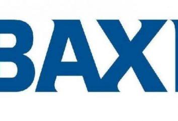 "Caldaie ""Baxi"": recensioni. Caldaia a gas ""Baxi"": descrizione"