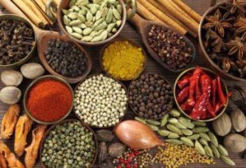 Przyprawy do ryb: przyprawy do gotowane, smażone, pieczone i słonych potraw