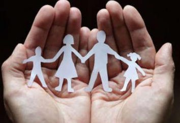leggi sociali: concetto, tipi. Servizio Sociale. Legge sulla protezione sociale delle persone disabili