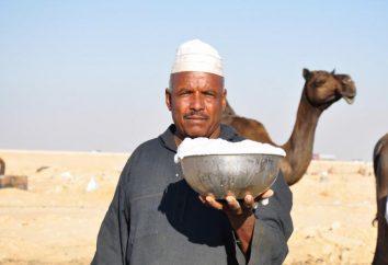 Camel latte: il nome, l'applicazione