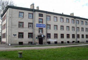 obsługa hotelu i turystyka College, St. Petersburg: Wymagania wstępne