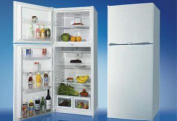 No Frost – was ist das? Kühlschrank mit No Frost System. System No Frost