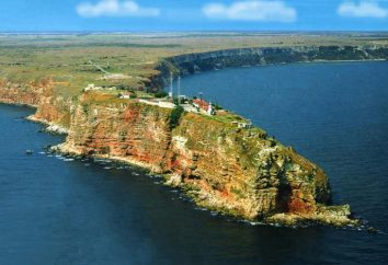 Naval Battle of Cape Kaliakra: historia, efekty i ciekawostki