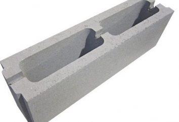 Cuando se usan bloques de partición de yeso?