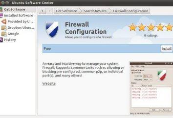 Wie eine Firewall mit ihren eigenen Händen konfigurieren?