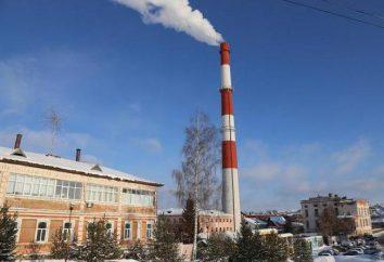"""Chiuso Joint-Stock Company """"Lysva Metallurgical Plant"""": storia, descrizione, prodotti"""