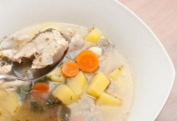 Vuoi cucinare un pesce delizioso? vedere rapidamente ricetta carpa