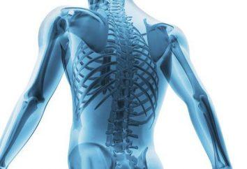 processus Pathologique – il est … un processus pathologique dans le corps: définition, étapes et caractéristiques