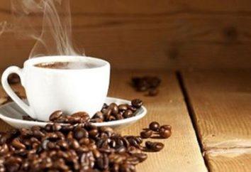 café vietnamita. café molido vietnamita: opiniones, precios