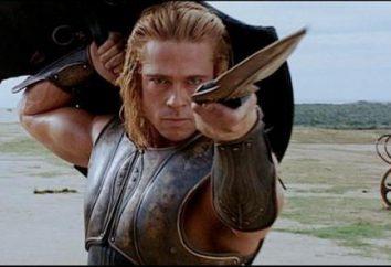 """Il film """"Troy"""": i personaggi e gli attori. """"Troy"""": una breve descrizione"""