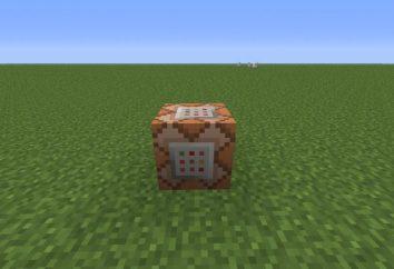 blocco di comando in Minecraft: come usare?
