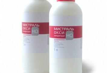 """Descrizione e istruzioni per l'uso: """"Mistral"""""""