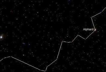 Constellation Hydra: la posizione e punti di interesse