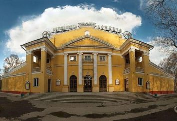Musical Comedy Theatre (Nowosybirsk): repertuar, historia, firma