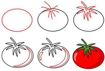 Jak narysować ołówkiem pomidorowy i akwarela, oraz w kontekście całości?