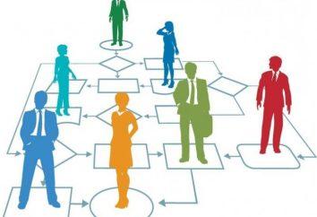 Moderne Management-Tools: BPM-System