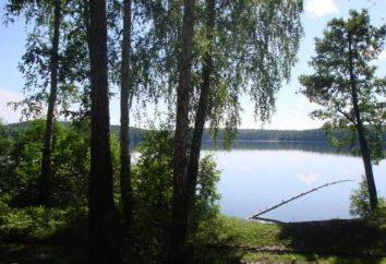 Lac Tashkul: loisirs et la pêche dans la région de Tcheliabinsk
